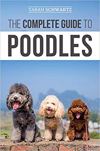 The Complete Guide to Poodles: Standard, Miniature, or Toy
