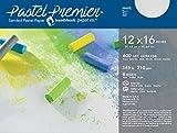 Handbook Paper Pastel Premier Paper X-Fine 12X16 6 Sheet Pk