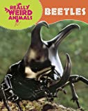 Beetles, Clare Hibbert, 1848379579