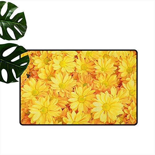 RenteriaDecor Yellow Flower,Durable Rubber Door Mat Lively Daisies Fresh Bouquets with Natural Seasonal Bedding Plant Petals 36