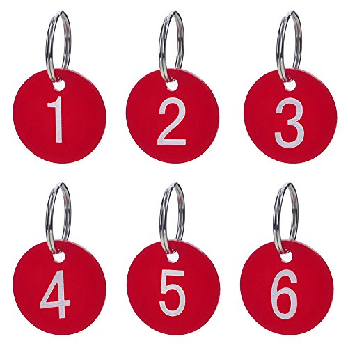 Aspire Numbered Tags with Key Ring, Acrylic Id Tags for Organizing 50 Pieces-Red-1to50 (Plastic Key Tags Numbers)