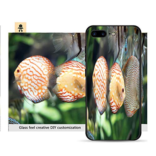 iPhone 7p / 8p Ultra-Thin Phone case Pigeon Blood Discus Fish Symphysodon aequifasciatus Resistance to Falling, Non-Slip, Soft, Convenient Protective case