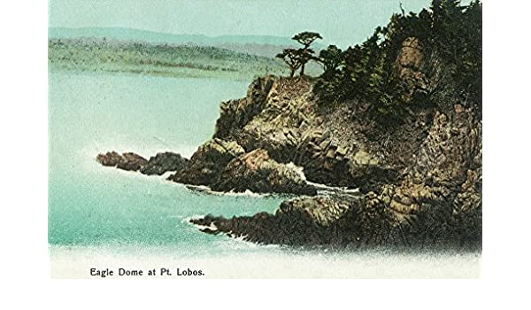Amazon.com: Los Gatos, California - Aerial View of Eagle Dome at Point Lobos (9x12 Art Print, Wall Decor Travel Poster): Everything Else
