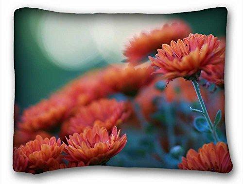 "Generic Personalized ( Nature Flowers nature flowers petals plants color macro close up bouquet ) DIY Pillow Cover Size 20""X26"" suitable for Twin-bed PC-Bluish-54589"