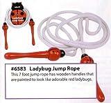 : Ladybug Jump Rope by Toysmith