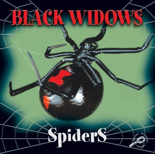 Black Widows (Spiders Discovery Library)