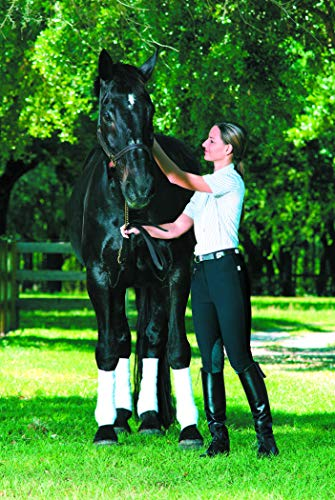 DEVON-AIRE Ladies All Pro Dev Tek Breeches, Black, for sale  Delivered anywhere in USA