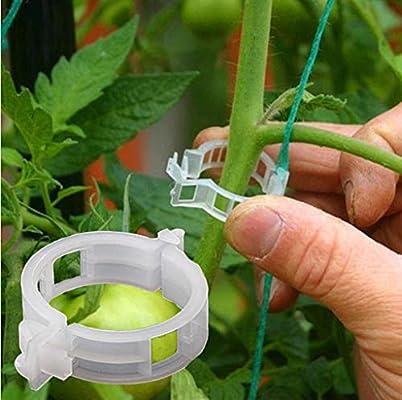 Cloud ROM - Pinzas de plástico para Colgar Plantas y Verduras ...