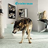 Grinderman 2 (Deluxe Version)