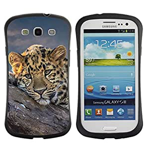 Be-Star Impreso Colorido Diseño Antichoque Caso Del iFace Primera Clase Tpu Carcasa Funda Case Cubierta Par SAMSUNG Galaxy S3 III / i9300 / i747 ( African Cheetah Big Cat )