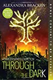 Through the Dark (A Darkest Minds Collection) (A Darkest Minds Novel)