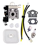 Podoy PB-250LN Carburetor for Echo with Air Filter Fuel Maintenance Kit A021003661 ES-250