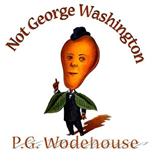 Not George Washington Audiobook
