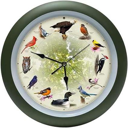 Mark Feldstein - Reloj de pájaro Cantante, Color Verde: Amazon.es: Hogar