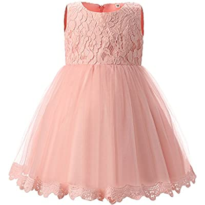 TTYAOVO Girls Lace Tulle Flower Princess Party Toddler and Baby Girl Dress