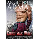 Christmas Wolf (Shifters of Dundaire 2)