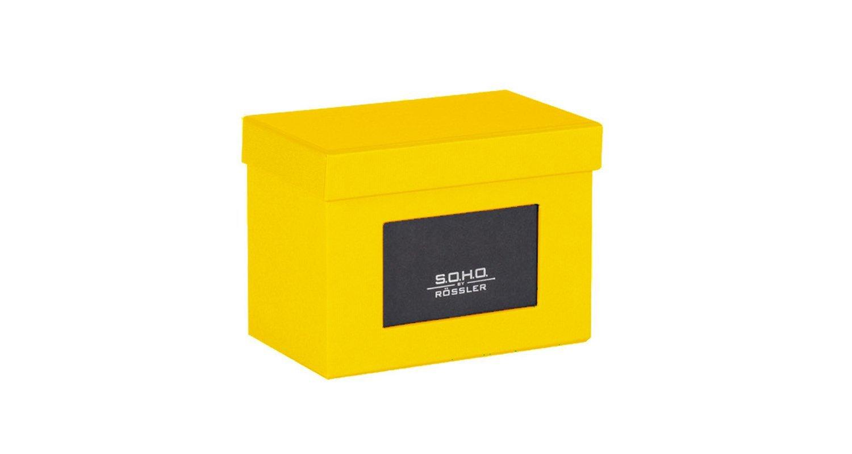 R/össler SOHO Boite de rangement pour photos avec poign/ée et porte-/étiquette Vert pomme 165 x 150/mm