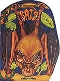 img - for Misunderstood: Bats (Giant Edition) (Misunderstood S) by Arthur John L'Hommedieu (1997-04-01) book / textbook / text book