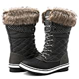 Globalwin Women's 1730 Waterproof Winter Boots (8 D(M) US Women's, 1732Grey)
