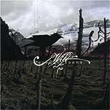 Dark Meadows by Wilt (2013-05-03)