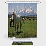 National Parks Home Decor Shower Curtain And Floor Mat Combination Set Equestrian Decor Snow Idyllic Mountain Peaks Arabian Horse Art Prints For decoration and daily use Multi