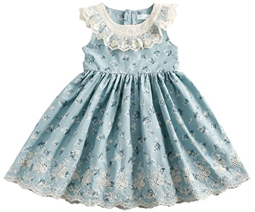 Sharequeen Flower Lace Embroidery Cotton Girls Dress Ruffle Design Blue Color 2-3T