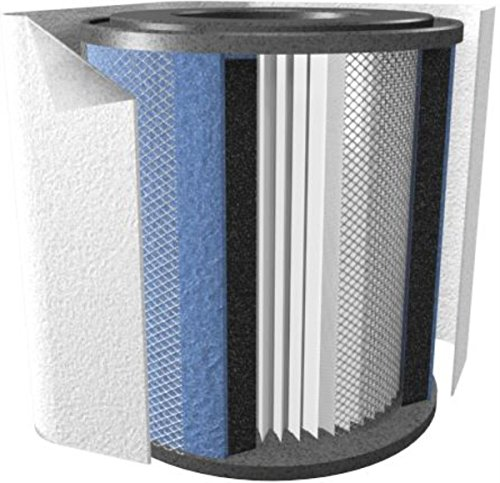 Hega Air Cleaner (Austin Air FR205B Junior Allergy/HEGA Filter, White)