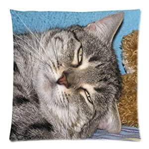 CCTUSGSH Series Sweet Cat Animals Cotton Throw Pillow Case Cushion Cover 18 X 18 Inches One Side