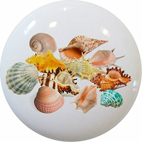 Carolina Hardware and Decor Seashell Ceramic Cabinet Drawer Knob