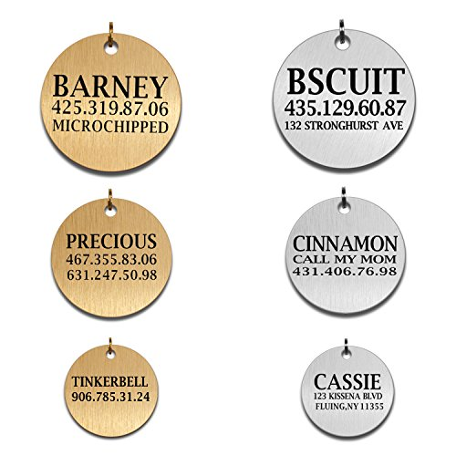 Dachshund Disc Charm (Custom Dog Tags Pet Id Tags for Small / Large Breed Dog Name Engraved Plates Double Sides Engraved- Stainless Steel Silver, Gold (Steel-silver, Round Disk Tag))