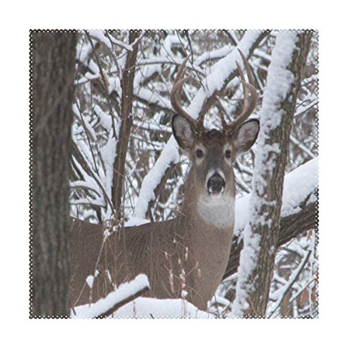 (LoveBea Placemats Whitetail Iowa Buck Deer Square Placemats for Dining Table Kids Table Mat 1 Piece )