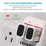 Tenergy TN141 2 Bay 9V Smart Charger with 4 pcs