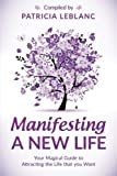 Manifesting a New Life: Your Magical Guide to Attracting the LIfe that you want (Volume 2)