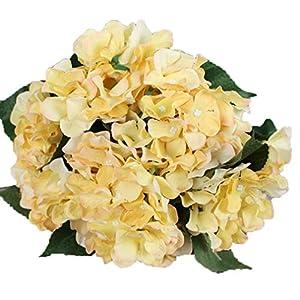 Lannu Artificial Silk Hydrangea Flowers Fabric Floral Natural Fake Hydrangea Flower Wedding Home Flower Wall Decor Pack 2 ... (7 Heads Champagne) 1