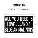 JennyGems - All You Need is Love and a Belgian