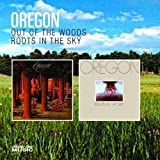 Out Of The Woods / Roots In The Sky