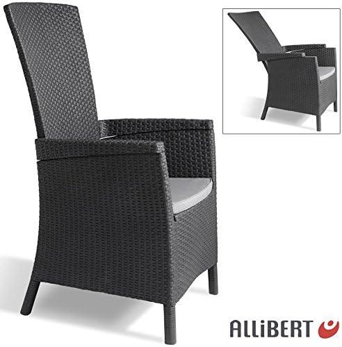 Allibert Lida Jardín Sillón de 4 posiciones Tumbona silla de jardín terraza: Amazon.es: Jardín