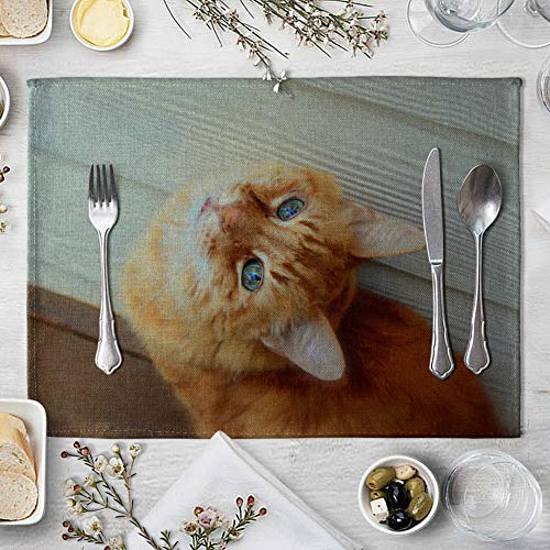 memorytime Cute 3D Cat Print Placemat Pad Linen Dining Table Insulation Mat Home Decor Kitchen Dining Supplies - 6# by memorytime (Image #1)