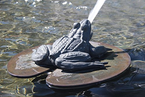 Home Comforts LAMINATED POSTER Water Fountain Animal Frog Poster Print 24x16 Adhesive Decal by Home Comforts