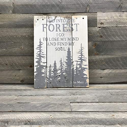 (CELYCASY Ready to Ship - Into The Forest I Go - John Muir Quote Wood Sign - Gift for Naturalist - Gift for Hiker - Wood Mountain Sign)