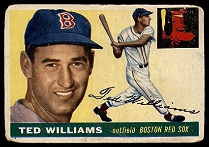 Ted Williams Carl Yastrzemski Boston Red Sox 8x10 11x14 16x20 photo 277