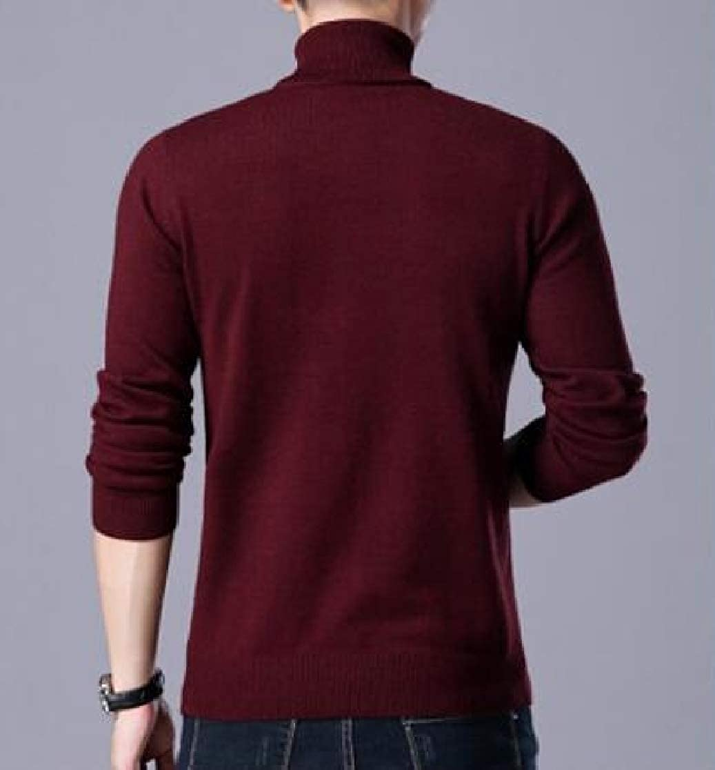 Joe Wenko Mens Long-Sleeve Stylish Turtle Neck Jumper Pure Color Sweater