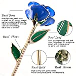 Sinvitron-Gold-Dipped-Rose-Long-Stem-24k-Gold-Dipped-Real-Rose-Lasted-Forever-with-Stand-Great-Valentiness-DayChristmasWeddingBirthday-Gifts-for-HerBlue