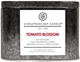 Chesapeake Bay Candle Heritage Collection Double Wick Tin Candle, Tomato Blossom