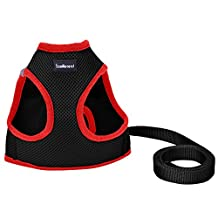 Small Dog Harness Best for Puppy Easy and Comfortable Walking Soft Vest with Leash, Black Medium