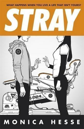 Stray by Monica Hesse (2013)