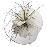 Best Flower Hats - Lusiyu Fashion Women's Flower Feather Mesh Net Fascinator Review