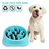 Decyam Pet Fun Feeder Dog Bowl Slow Feeder, Bloat Stop Maze Dog Bowl Interactive Cat Puzzle Feerder(Blue)