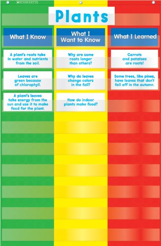 Scholastic Teacher's Friend 3-Column Chart Pocket Chart, Multiple Colors (TF5114) ()