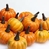 Factory Direct Craft Bag of 16 Artificial Fall Harvest Mini Pumpkins (2 inch dia)
